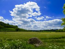 Green fields and blue skies Royalty Free Stock Image