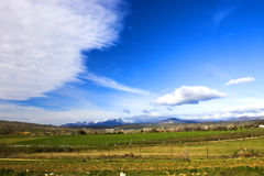 Green fields, blue sky. Green fields with a spectacular blue sky with some clouds Stock Photo
