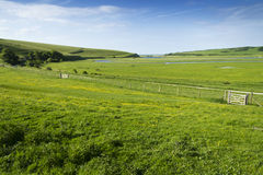 Green fields blue sky Royalty Free Stock Photos