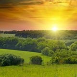 Green fields and a bright sunrise over the horizon. Royalty Free Stock Image