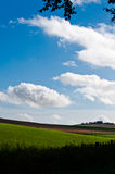 Green fields and cloudscape. Scenic view of green fields in countryside with blue sky and cloudscape background Royalty Free Stock Photography