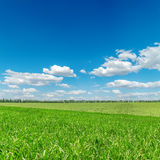 Green fields and cloudy sky Stock Photos