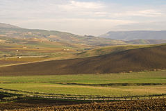 Green fields in countryside. Scenic view of green fields and hills in countryside on island of Sicily, Italy royalty free stock photography