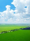 Green fields in countryside Stock Photo