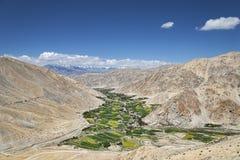Green fields among desert mountains Royalty Free Stock Image