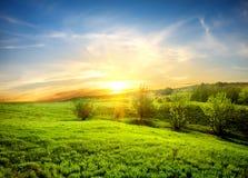 Green fields of grass stock photos
