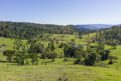 Green fields. Fields and hills of Australia Royalty Free Stock Images