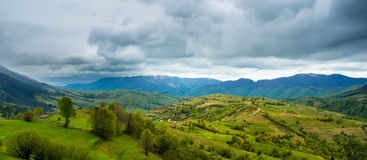 Green fields and hills in the Transcarpathian moun Royalty Free Stock Images