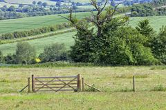 English countryside in summer, with farm fields, meadows, entrance gate . Green fields, meadows, country road, hedgerow and wooden gate, rural English Royalty Free Stock Photos