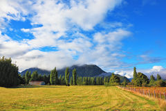 Green fields and mountain range Stock Image