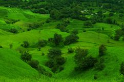Green fields on a mountain slope-2 Stock Photo