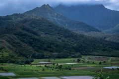 Green fields and mountains Royalty Free Stock Images