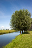 Green fields near Amsterdam, Netherlands Stock Images