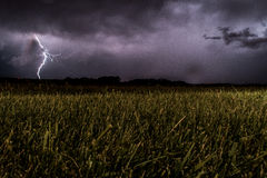 Green Fields during Night Being Struck by a Lightning Stock Images