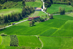 Green fields of Piedmont in spring. Stock Photography