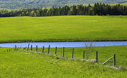 Green Fields Pond Fence Stock Image