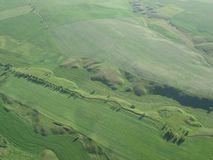 Top view of green fields. stock photography