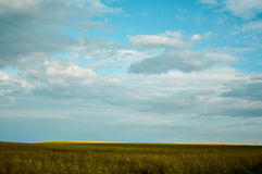 Green fields under blue skies Stock Images