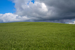 Green fields under dark clouds Royalty Free Stock Image