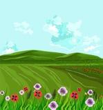 Green fields Vector. Spring background decor. Illustration Stock Photo