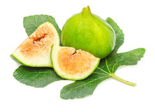 Green fig fruit isolated Stock Photography