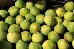 Green figs Royalty Free Stock Image