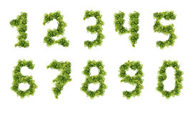 Green figures Stock Photo