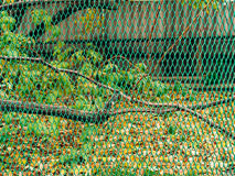 Green fine mesh netting. Green fence. Royalty Free Stock Image