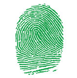 Green Fingerprint Illustration stock illustration