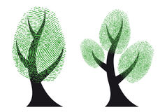 Green fingerprint tree, vector Royalty Free Stock Image