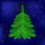 Green Fir on Blue Snowflakes Background Royalty Free Stock Photos