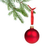 Green fir branch with red christmas ball. Isolated on white Stock Photos