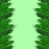 Green Fir Branches. On Green Background. Christmas Background Stock Photo