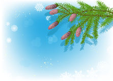 Green fir branches on blue snowflake background Royalty Free Stock Images