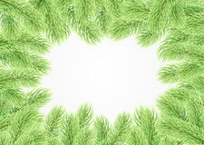 Green fir branches. Christmas background. The frame of the lush fir branches to celebrate xmas Stock Image
