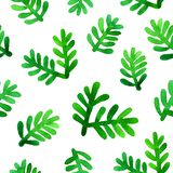 Green fir branches isolated on white background. Hand painted. Watercolor seamless pattern Royalty Free Stock Photo