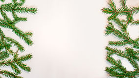 Green fir branches isolated on white background. New Year and Christmas theme Royalty Free Stock Photo