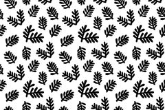 Green fir branches isolated on white background. Seamless pattern Royalty Free Stock Photo