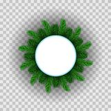 Green Fir Circle Frame. Isolated on White Background Royalty Free Stock Images