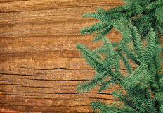 Green Fir pine branch on wooden background Stock Image