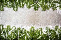 Green fir and snow Christmas background Stock Images