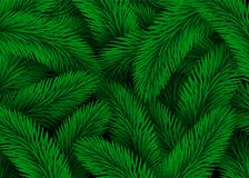 Green Fir Tree Branches. Design Christmas Background Texture Abstract Illustration.  Royalty Free Stock Photography