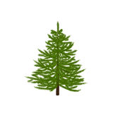 Green fir tree. Christmas symbol. New Year. On a white background isolated illustration. Green fir tree. Christmas symbol. New Year. On a white background Royalty Free Stock Photos