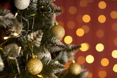 Green fir-tree with gold spheres royalty free stock images