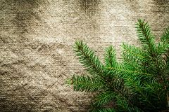Green fir tree twigs on bagging background Stock Photos