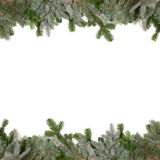 Green fir twig frame with christmas balls Stock Images