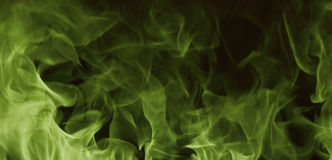 Green fire. Hot burning green fire abstract Stock Photos