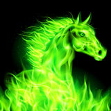 Green fire horse. Head of green fire horse on black background Royalty Free Stock Photo