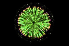 Green firework on black background for celebration party. Royalty Free Stock Images