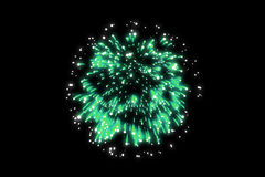 Green firework on black background. For celebration party. merry christmas and happy new year Royalty Free Stock Photo